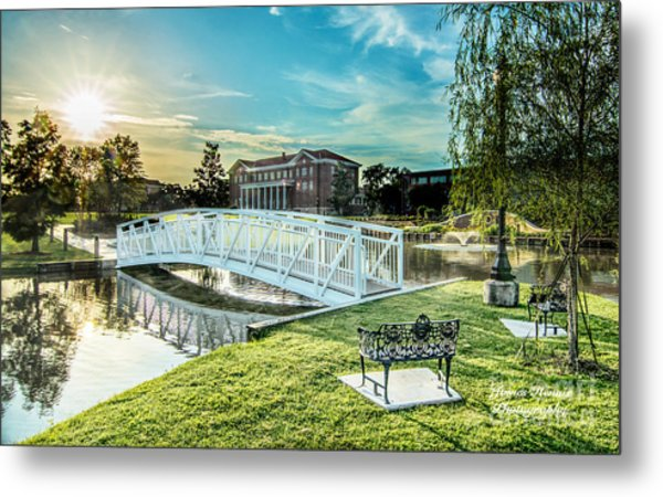 University Of Southern Mississippi Metal Print
