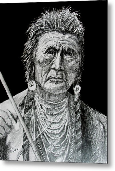 Unknown Indian V Metal Print by Stan Hamilton
