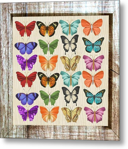 Unusual Colourful Butterfly Collage Metal Print