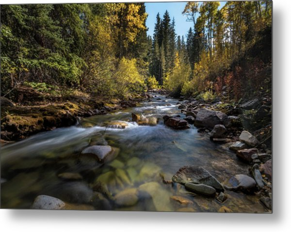 Up A Colorado Creek Metal Print