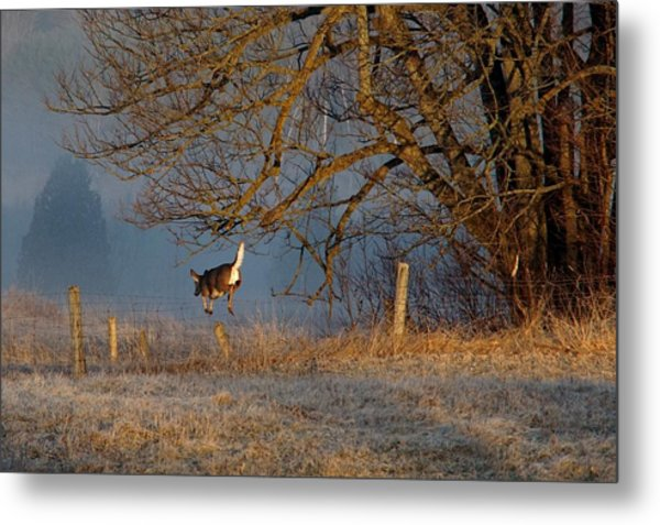 Up And Over Metal Print