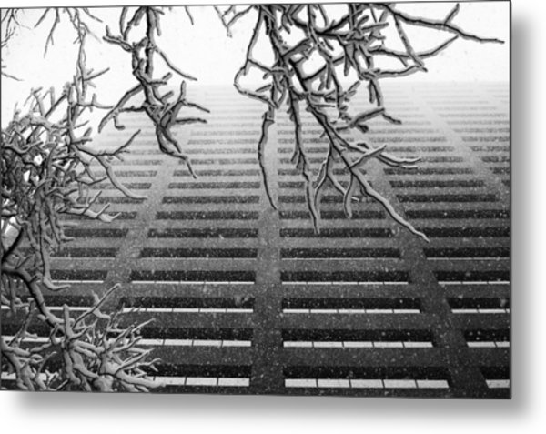 Up In The Snow Metal Print