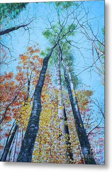 Metal Print featuring the painting Up Into The Trees by Mike Ivey