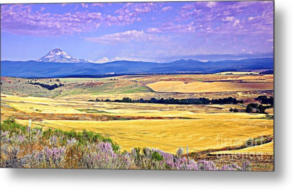 Upon Golden Fields Metal Print