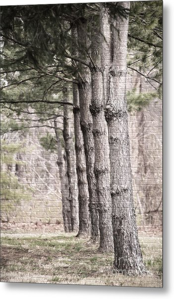 Urban Forestry Metal Print
