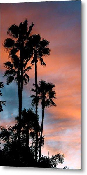 Urban Palms Metal Print by Peter Breaux