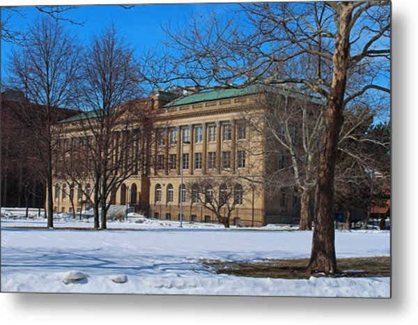 Us Court House And Custom House Metal Print