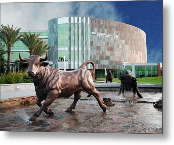 Usf Tampa Metal Print by Francesco Roncone