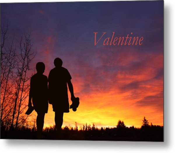 V4-into The Sunset Metal Print