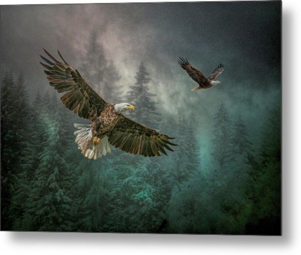 Valley Of The Eagles. Metal Print