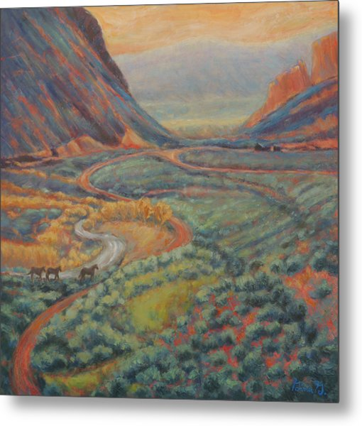 Valley Passage Metal Print