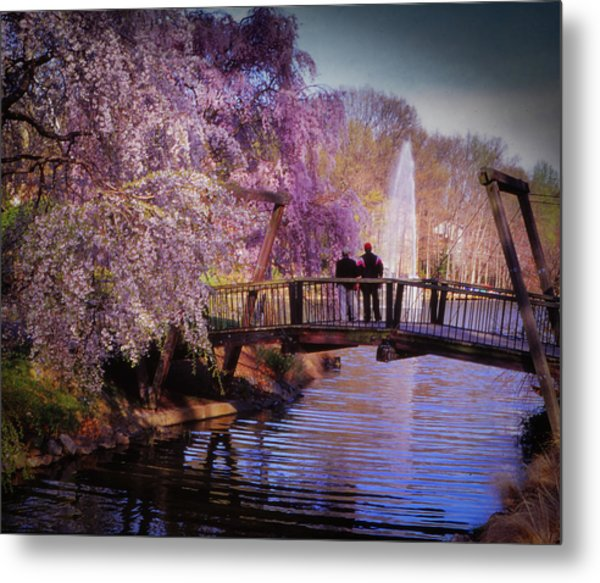 Van Gogh Bridge - Reston, Virginia Metal Print