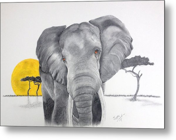 Vanishing Elephant Metal Print