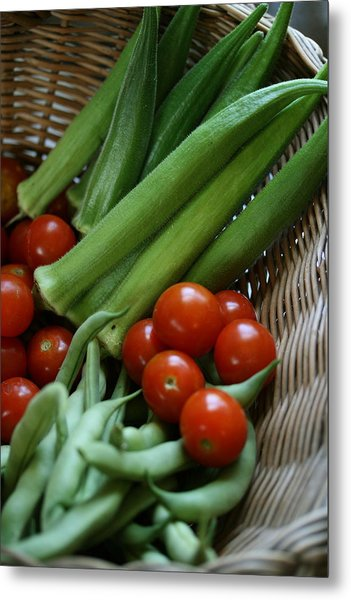 Vegetable Basket Metal Print by Karen Fowler