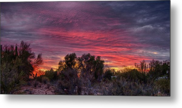 Verigated Sky Metal Print