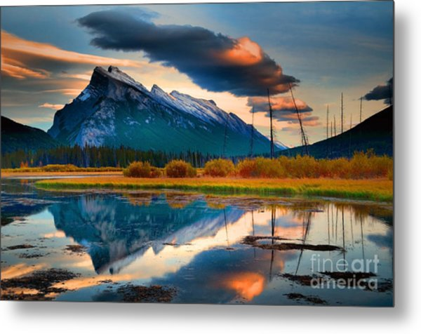 Vermillion Beauty Metal Print