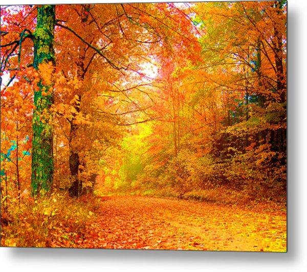 Vermont Autumn Metal Print by Vicky Brago-Mitchell