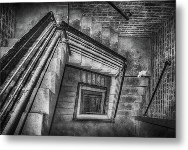 Vertigo - Cat - Stairwell Metal Print