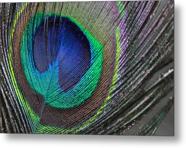 Vibrant Green Feather Metal Print