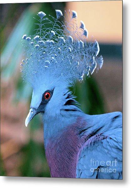 Victoria Crowned Pigeon Metal Print
