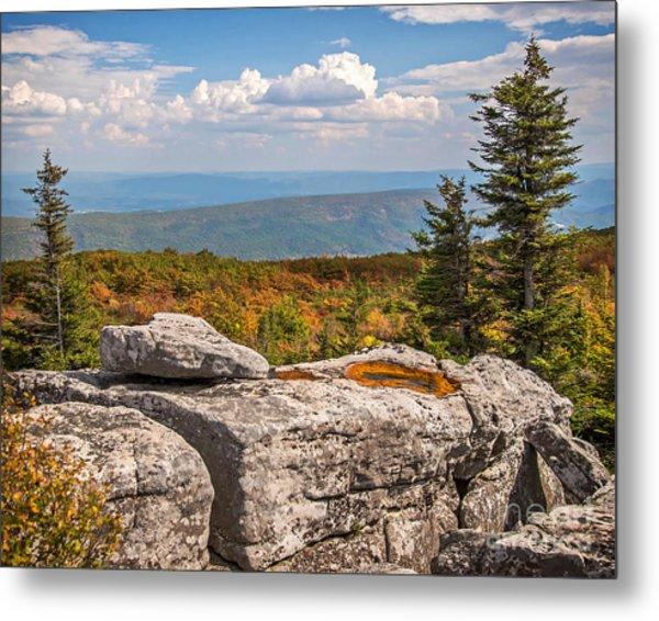 View From Bear Rocks 4173c Metal Print