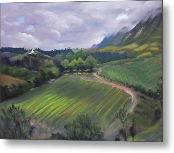 View From Creation Winery Metal Print