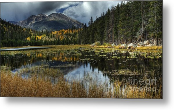 View From Cub Lake Metal Print