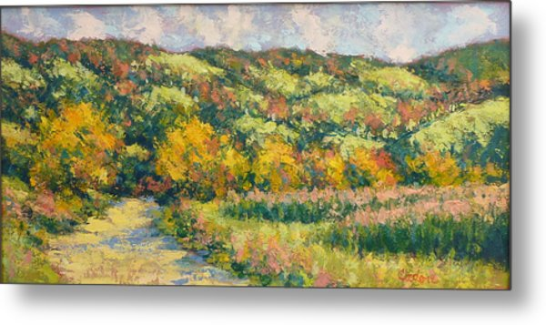 View From Pine Plains Metal Print by Gene Cadore
