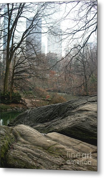View From Rocks Metal Print
