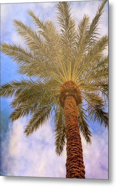 View From The Pool Metal Print by JAMART Photography