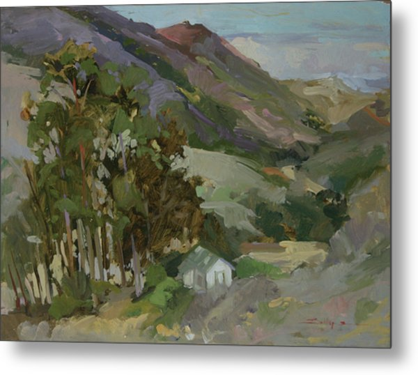 View From The Reservoir - Catalina Island Metal Print