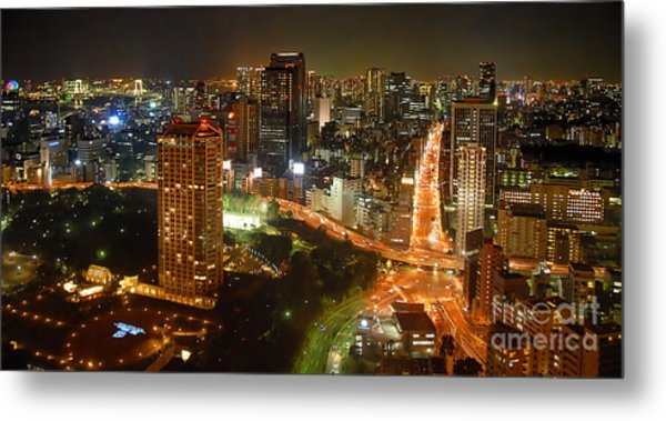 View From Tokyo Tower Metal Print