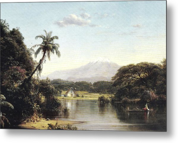 View On The Magdalena River Metal Print