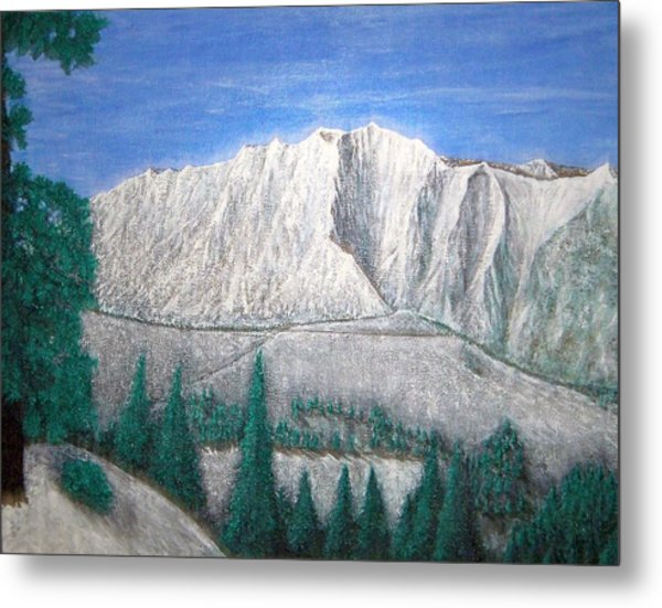 Viewfrom Spruces Metal Print