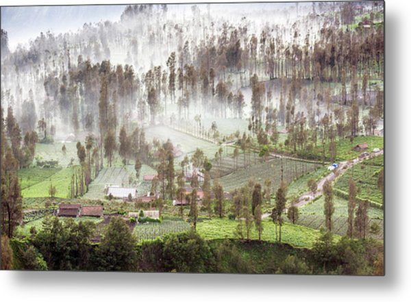 Metal Print featuring the photograph Village Covered With Mist by Pradeep Raja Prints