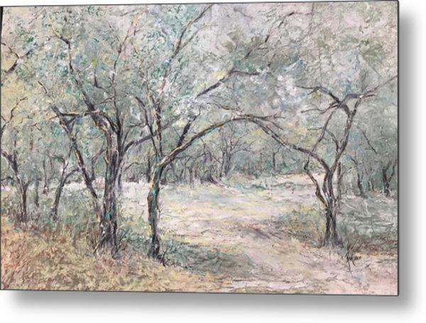 Vincents Olive Trees 2 Metal Print