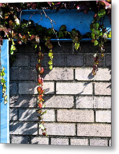 Vines On Blue Metal Print by Gary Everson