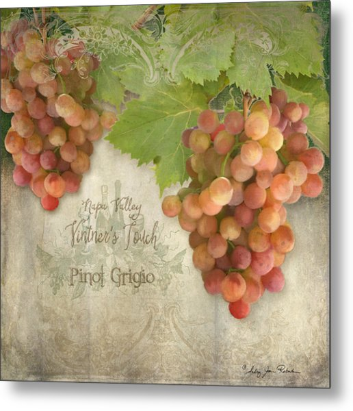 Vineyard - Napa Valley Vintner's Touch Pinot Grigio Grapes  Metal Print