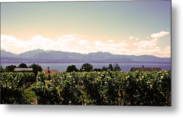 Vineyard On Lake Geneva Metal Print