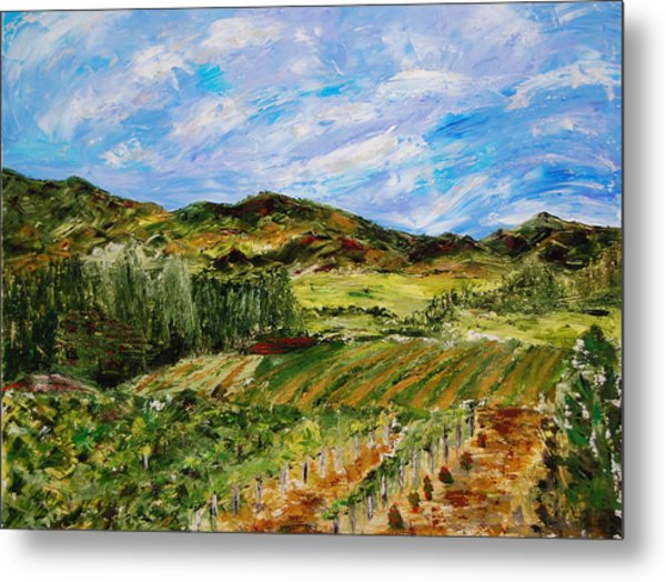 Vineyard Solitude Metal Print by Deborah Gall