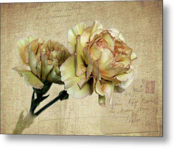 Vintage Carnations Metal Print