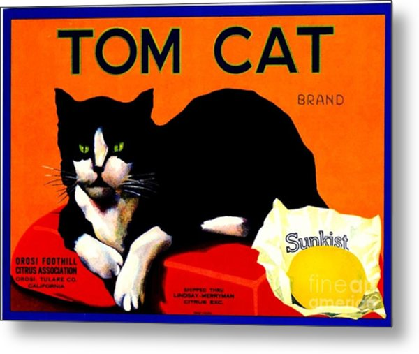 Vintage Sunkist Tom Cat Metal Print