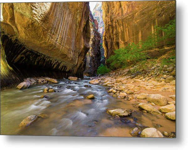Virgin River - Zion National Park Metal Print