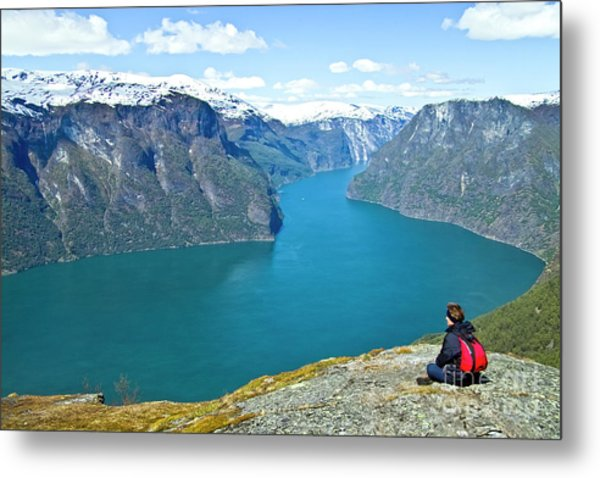 Visitor At Aurlandsfjord Metal Print