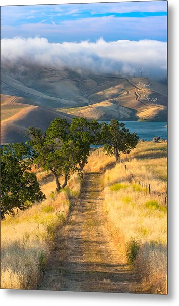 Vista Grande Trail At Sunrise Metal Print