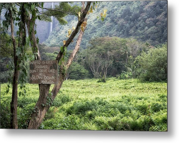 Metal Print featuring the photograph Waipio Valley Road Rules by Susan Rissi Tregoning