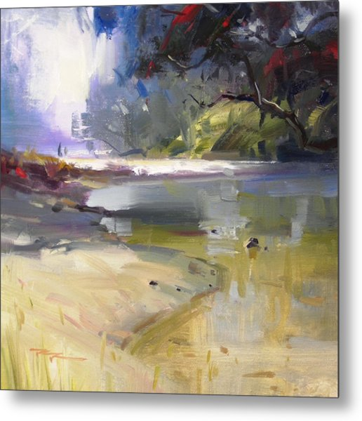 Waipu Cove Metal Print by Richard Robinson