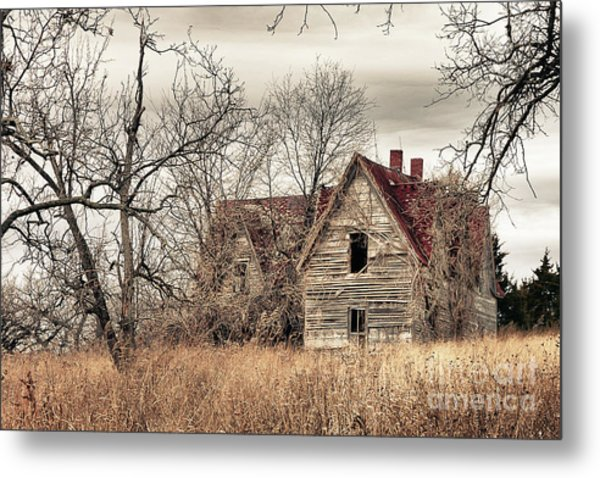 Waiting For New Owners Metal Print by E Mac MacKay