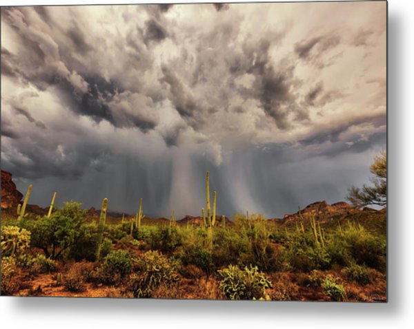 Metal Print featuring the photograph Waiting For Rain by Rick Furmanek