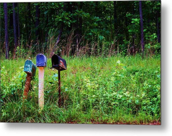 Waiting For The Mail Metal Print by Beverly Hammond